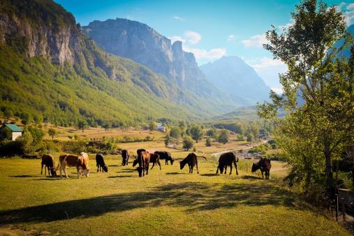 Vizesiz Gidilen Gidilecek Avrupa Ülkeleri  Arnavutluk
